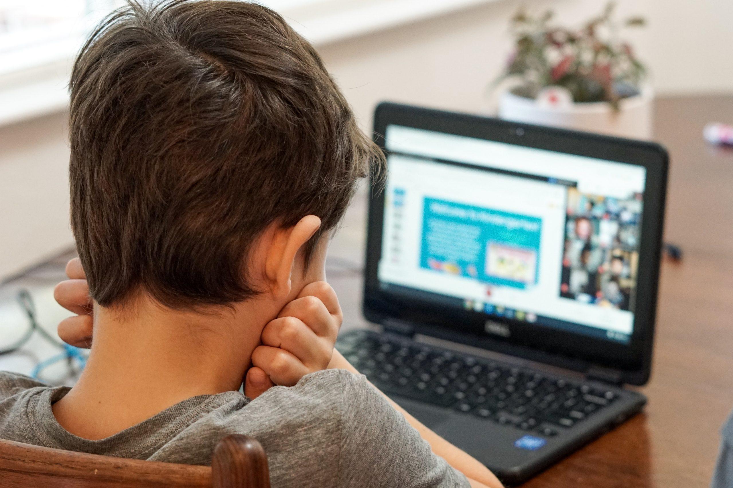 student in online school